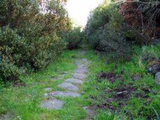 La Via Severiana --foto di Giuseppe De Giacometti