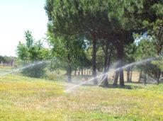 Parco Canale dello Stagno - Foto di www.insiemeperlosport.it