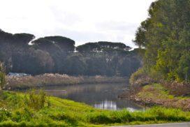 Canale dei Pescatori - foto Federica Sequi