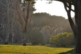 Casal Palocco - Foto di Federica Sequi
