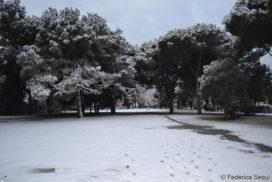 Pratone Casal Palocco neve 2012