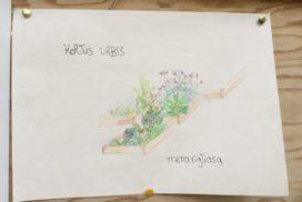 Hortus Urbis