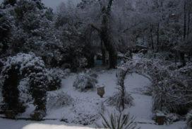Axa neve 2012