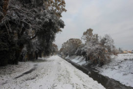 Canale dei Pescatori neve 2012