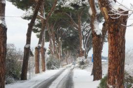 Via dei Pescatori neve 2012