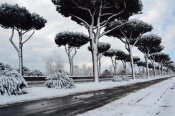La neve del 2018 - La Cristoforo Colombo